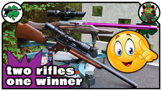 BEST 22 Rifle SHOWDOWN | Browning Buckmark Carbine -VS- Elite 22