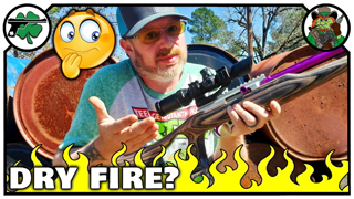 Should You Dry Fire Your 22LR Firearm