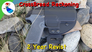 CROSSBREED RECKONING // Revisit the most hated video of the channel