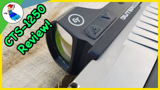 The Alternative to Laser Sights - Crimson Trace CTS-1250 Review
