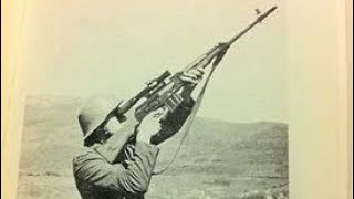 Shooting the ZpapM70 ZR7762WM And a Yugoslavian M76 DMR : NAM VET APPROVED 4K