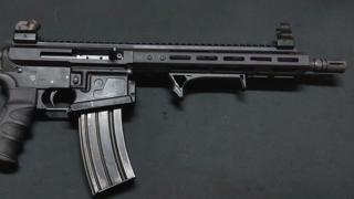 """AR-15: NEW 11.5"""" 556 NATO Bear Creek Arsenal Gen 2 Side Charging Upper Honest Review And Problems?"""