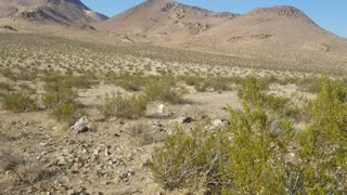 Desert shooting with the Browning Hi Power