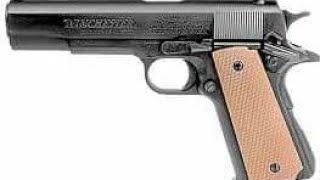 A 1911 that ships to your door. Well sort of. Daisy Winchester Model 11.